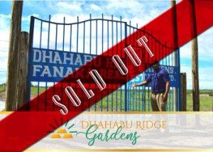 dhahabu_sold_ou