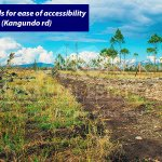 Fanaka Olive Access roads