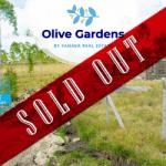 Olive Gardens – Kamulu , along Kangundo Road