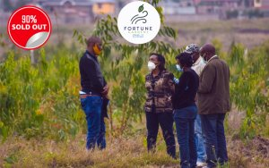 fortune_phase_2_kamulu_plots