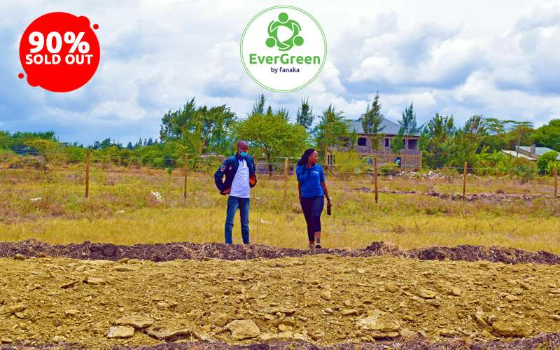 Read more about the article Is there really a right age to invest in land?