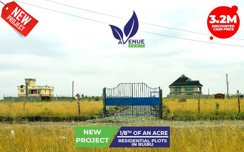 avenue_project